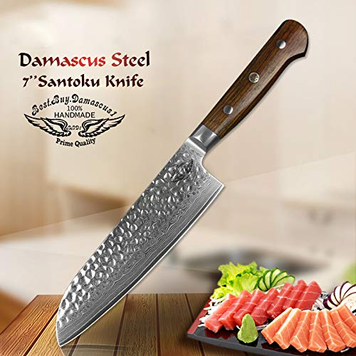 (santoku knife 8 Inch, Japanese VG10 Damascus Steel knife Professional Chef's Knife Hammered Finish with Rosewood Handle Razor Sharp Blade - Series BBD1-SHK-03)