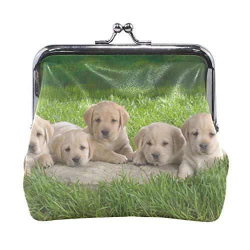 Rh Studio Coin Purse Labrador Puppies Grass Dogs Print Wallet Exquisite Clasp Coin Purse Girls Clutch ()
