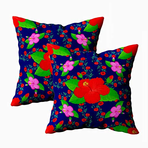 18x18 Pillow Cover,2 Packs Throw Pillow Covers,Douecilsh Cushion Soft Home Sofa Decorative Design Invitation Wedding Greeting Cards Hibiscus Pattern Colorful Floral Flowers Double Printed