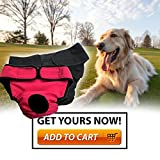 My-Dog-Underwear-Set-of-2-Black-and-Red-Super-Comfortable-Unisex-Pet-Diaper-Sanitary-Pants-Available-in-Size-S-M-L-XL-Premium-High-Absorbency-Cotton-Extremely-Keep-Your-Room-Spotless-Absolutely-Easy-t