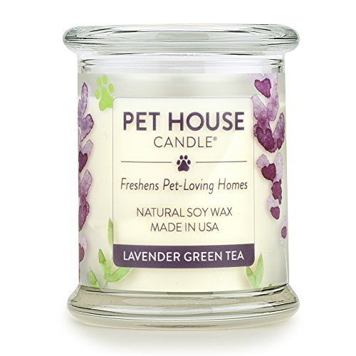 Green Tea Scented Candle - One Fur All 100% Natural Soy Wax Candle, 20 Fragrances - Pet Odor Eliminator, Appx 60 Hrs Burn Time, Non-toxic, Reusable Glass Jar Scented Candles - Pet House Candle, Lavender Green Tea