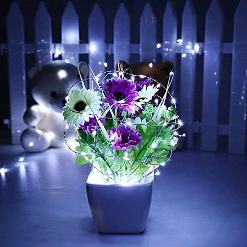 Top 10 Best Solar Powered Led String Lights Reviews 2018