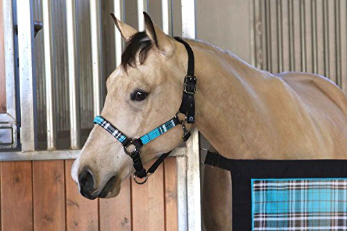 Kensington Premium Halter with Padded Nose - Stronger Than Leather - Padded Nose Piece Adds Comfort and Control - Throat Snap for Identical Fit Each ()