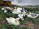 DUCKS IN A FIELD by Alexander Koester birds Tile Mural Kitchen Bathroom Wall Backsplash Behind Stove Range Sink Splashback 4x3 6'' Rialto
