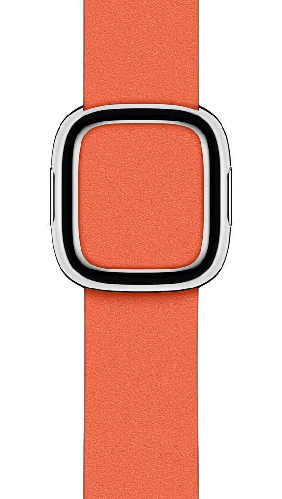 Apple Watch Modern Buckle (40mm) - Sunset - Large by Apple (Image #2)
