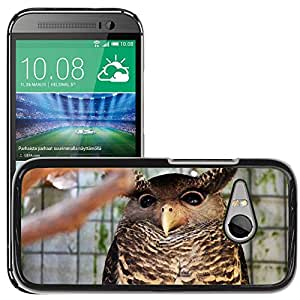 Hot Style Cell Phone PC Hard Case Cover // M00129445 Owl Eyes Bird Fly Wings Feather // HTC One Mini 2 / M8 MINI / (Not Fits M8)
