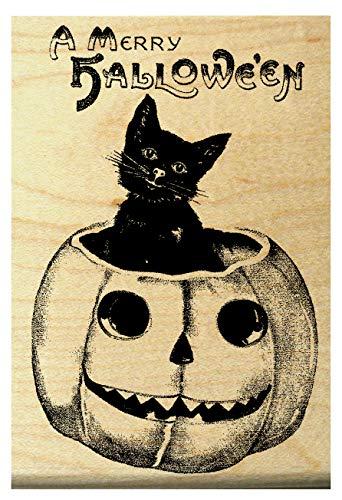 P16 Halloween rubber stamp cat in pumpkin ()