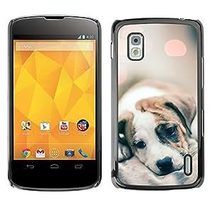 Cachorro Piel Luces borrosas lindos del perro del bebé- Metal de aluminio y de plástico duro Caja del teléfono - Negro - LG Nexus 4 E960
