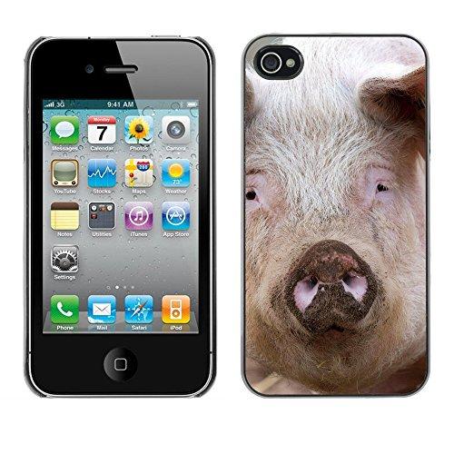Premio Sottile Slim Cassa Custodia Case Cover Shell // F00027669 pig Staring // Apple iPhone 4 4S 4G