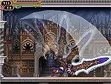 Castlevania: Order of Ecclesia / Akumajou Dracula: Ubawareta Kokuin [Japan Import]