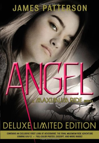 Angel - Book #7 of the Maximum Ride