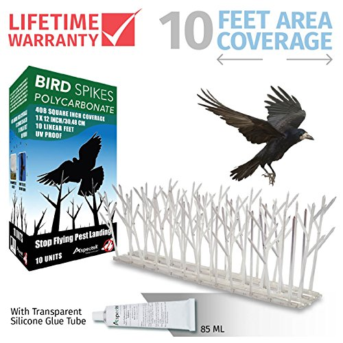 Plastic Bird Spikes (Aspectek Polycarbonate Bird Spikes Kit, 10 Feet with Transparent Silicone Glue Tube)