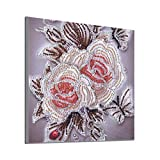 5D Partial Drill Cross Stitch,Kits Crystal Special Shaped Diamond Painting DIY (A2)
