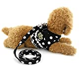 Ranphy Samll Dog Cat Kitten Harness Vest Dots Crown Patch Toy Dog Girl Dog Harness and Leads Black M
