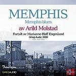 Reiseskildring - Memphis [Travelogue - Memphis]: Memphis blues | Arild Molstad