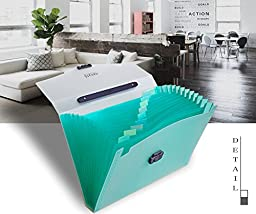 Shuter 13-Pockets A4 Expanding Accordion File Folder with Handle, Buckle Closure and Subject Labels.(Green)