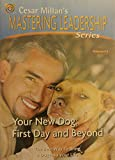 Cesar Millan's Mastering Leadership Series Volume 3: Your New Dog: First Day And Beyond