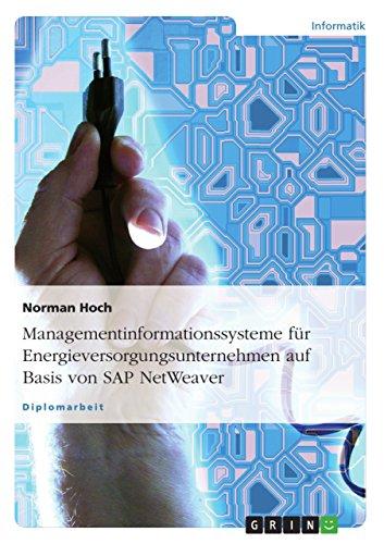 Managementinformationssysteme für Energieversorgungsunternehmen auf Basis von SAP NetWeaver (German Edition) Pdf