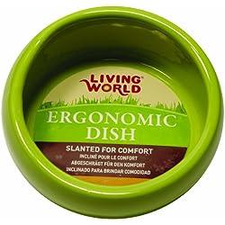 Living World Ergonomic Dish, Green, Small
