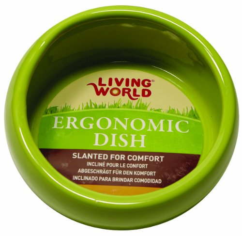 Living World Ergonomic Dish, Green, - Ceramic Guinea Pig