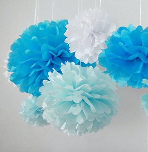 Pom Poms - 5pcs 2 Sizes Tissue Paper Flowers, Tissue
