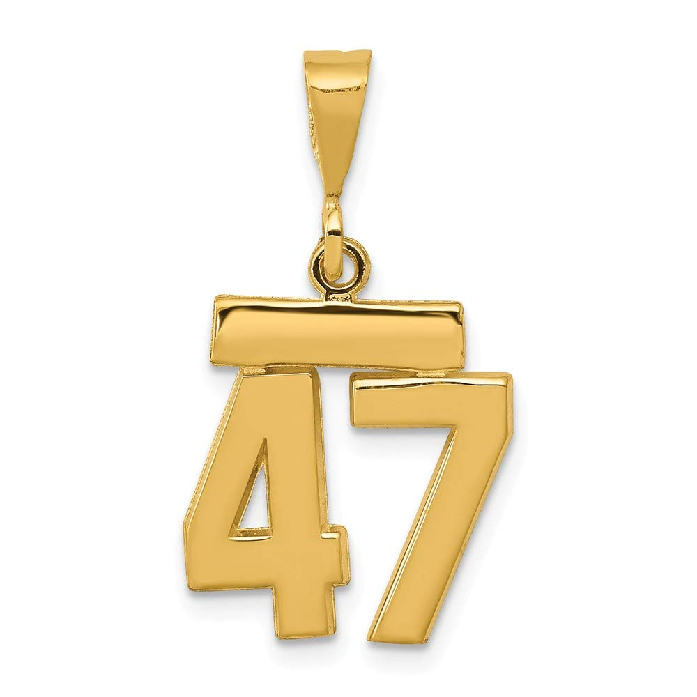 14K Yellow Gold Small Polished Number 47 Charm