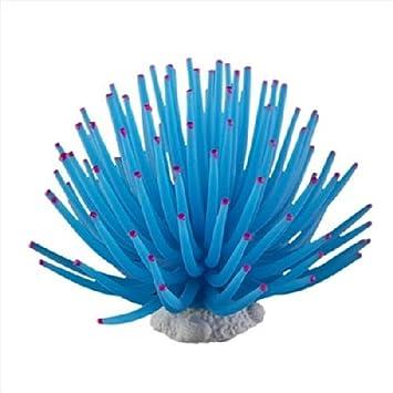 6273593378311 B.cweat - Adorno de Silicona para Acuario, diseño de pecera, Color Coral, Azul, Talla única: Amazon.es: Hogar