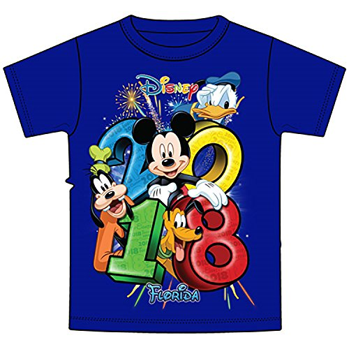 Disney Mickey Mouse Donald Duck Goofy Pluto Youth Unisex T Shirt 2018 Stacked Group Tee (X-Large, Royal)