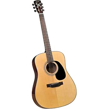 Bristol BD 16 Dreadnaught Acoustic Guitar