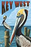 Key West, Florida - Brown Pelican (24x36 Giclee Gallery Print, Wall Decor Travel Poster)
