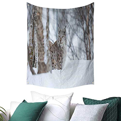 Anshesix Animal Home Decor Tapestry European Lynx Snowy Cold Forest Norway Nordic Country Wildlife Apex Predator College/Dorm Decoration 54W x 72L INCH Pale Brown White