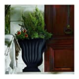 Novelty Urn and Statue Planter Color: Caviar Black