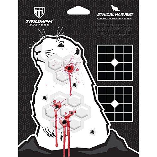 hog paper targets - 7