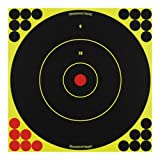 SHOOT-N-C 12 Inch Bullseye Targets -  100 Count Pack With 2,400 Pasters