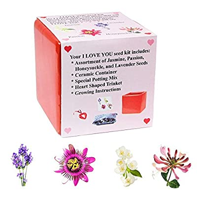 Eve's Blooming Flower Seed Kit - I LOVE YOU COLLECTION, Complete Kit to Grow Jasmine, Passion, Honeysuckle, and Lavender Seed