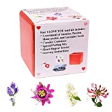 Eve's Blooming Flower Seed Kit - I LOVE - Best Reviews Guide