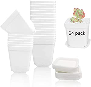 24 Pack 3inch White Square Plastic Plant Pot/Pots with Saucer,Flower Plant Container Seedling Nursery Pots Indoor Outdoor for Y Your Room,Garden Office and Balcony Decor