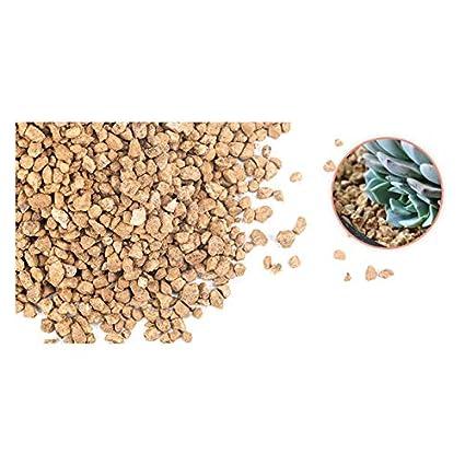 Amazon com: ALXDR Lava Rocks,Vermiculite Powder,Medical Stone,Green