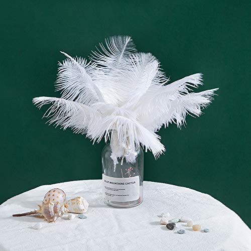 Ostrich Feather Craft 8-10inch (20-25cm) Plume for Wedding Centerpieces Home Decoration (10) ()