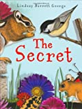 The Secret, Lindsay Barrett George, 0060295988