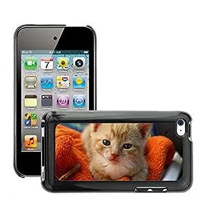Etui Housse Coque de Protection Cover Rigide pour // M00109984 Gato Gato Joven Juguetón Mascota Mieze // Apple ipod Touch 4 4G 4th
