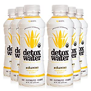 detoxwater™ Bioactive Aloe Water Piñamint Pineapple & Mint 16 Fluid Ounces, Pack of 6