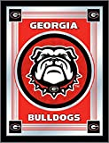 NCAA Georgia Bulldogs Logo Mirror, 17 X 22-Inch