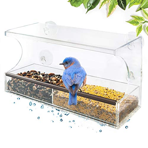 Go Simply Amazing Window Bird Feeder; Bird Feeders for Outside, Bird House for Outdoors Squirrel Proof, Unique Gifts, View Bluebird, Finch, Cardinal & more from your backyard + 4 Extra Suction Cups!