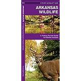 Arkansas Wildlife: A Folding Pocket Guide to Familiar Species (A Pocket Naturalist Guide)