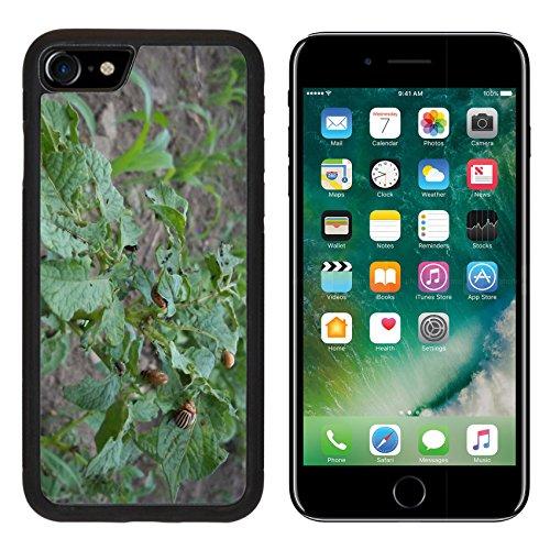 luxlady-premium-apple-iphone-7-iphone7-aluminum-backplate-bumper-snap-case-potato-colorado-potato-be