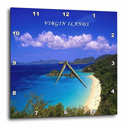 3dRose DPP_80547_1 Trunk Bay Virgin Islands-Wall Clock, 10 by 10-Inch