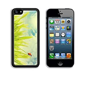 Ladybug on Grass Blades Apple iPhone 5C Snap Cover Case Customized Made to Order Support Ready Premium Aluminium Deluxe Aluminium 5 inch (125mm) x 2 3/8 inch (62mm) x 3/8 inch (12mm) Liil iPhone 5C Professional Cases Touch Accessories Graphic Covers Designed Model Folio Sleeve HD Template Designed Wallpaper Photo Jacket Wifi 16gb 32gb 64gb Luxury Protector Wireless Cellphone Cell Phone