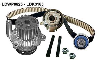Lucas lkp034 steuerriemen Kit con bombas de agua: Amazon.es: Coche y moto