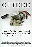 What Is Smudging:A Beginner's Guide To The Essentials (How To Develop Spiritual Practices Series)